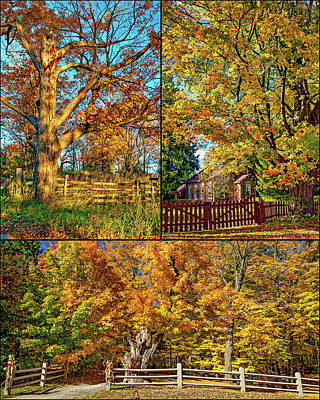 One Room School Houses Photograph - Country Fences Collage by Steve Harrington