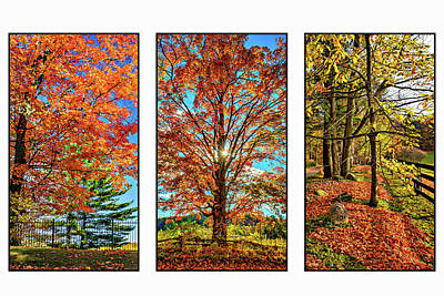 Country Fences Triptych Art Print