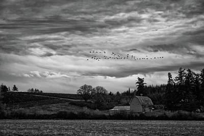Photograph - Country Flyby by Steven Clark