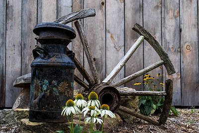 Photograph - Country Garden by Anthony Thomas