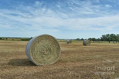 Haybales Photograph - Country Hay Bales by Tod and Cynthia Grubbs