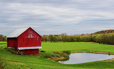 Photograph - Country In Ohio by Mary Timman