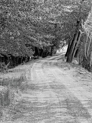 Photograph - Country Lane Bw by David King