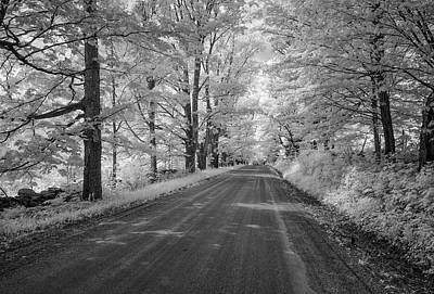 Photograph - Country Lane by Gordon Ripley