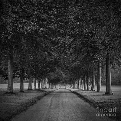 Balck Art Photograph - Country Lane by Richard Thomas