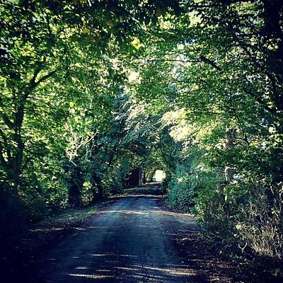 Photograph - Country Lane, Tree Tunnel by Samuel Pye