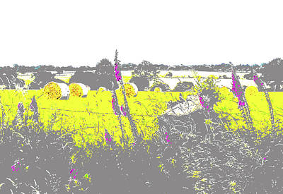 Digital Art - Foxgloves And Bales by Mary Castellan