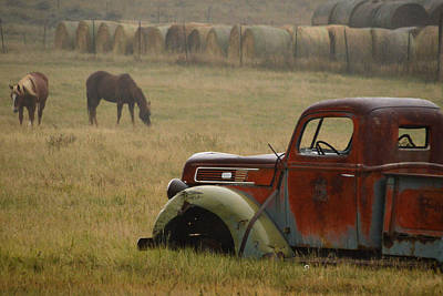 Art Print featuring the photograph Country Life.. by Al Swasey