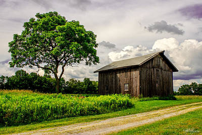 Photograph - Country Life by Skip Tribby