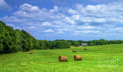 Photograph - Country Living Greene County Georgia Farming Art by Reid Callaway