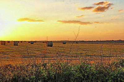 Photograph - Country Pasture At Sunset by HH Photography of Florida