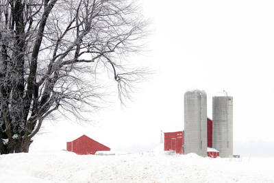 Photograph - Country Red And White  by Cathy Beharriell