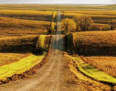 Photograph - Country Road - 11x14 by Scott Bean