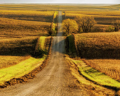 Photograph - Country Road - 16x20 by Scott Bean