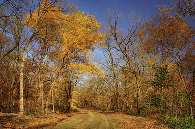 Photograph - Country Road - Autumn - Iowa by Nikolyn McDonald