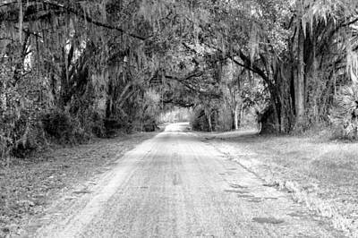 Photograph - Country Road by Bill Howard