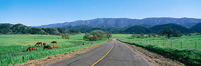 Of Santa Barbara Photograph - Country Road, California by Panoramic Images