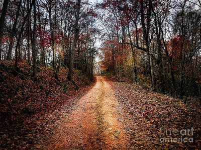 Photograph - Country Road Fall Colors by Peggy Franz