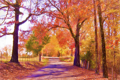 Photograph - Country Road - Fall Landscape by Barry Jones