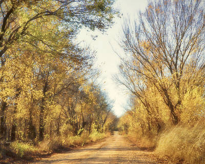 Photograph - Country Road In Autumn by Ann Powell
