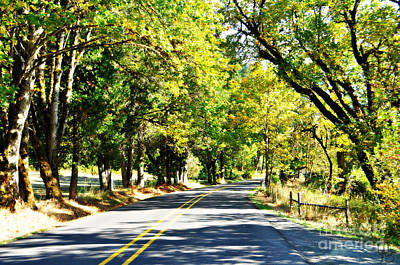 Photograph - Country Road In Fall  by Mindy Bench