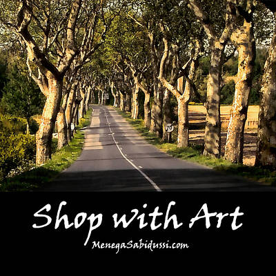 Painting - Country Road In Southern France- Shop With Art by Menega Sabidussi