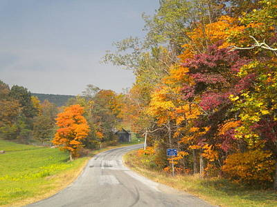 Photograph - Country Road In The Fall by Diannah Lynch