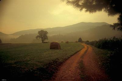 Country Road In The Mountains Art Print by Molly Dean