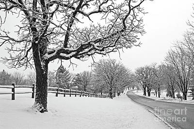 Photograph - Country Road In Winter by Kevin McCarthy