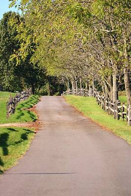 Photograph - Country Road by Karen Silvestri