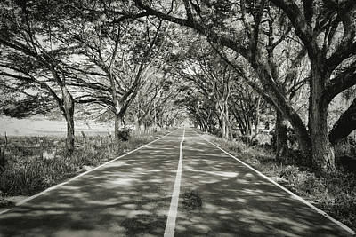 Black Photograph - Country Road by Michael Evans