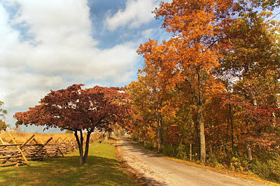 Photograph - Country Road by Mick Burkey