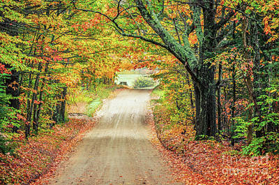 Photograph - Country Road by Mike Ste Marie
