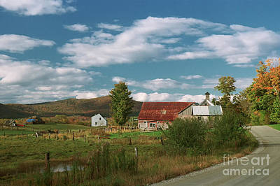 Photograph - Country Road by Nicki McManus