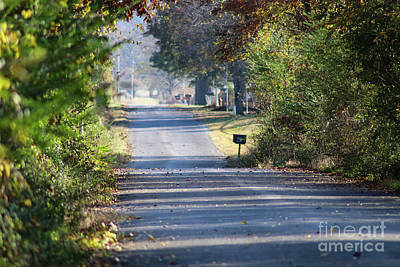 Photograph - Country Road Of My Memory by Susan Vineyard