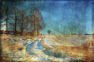 Photograph - Country Road by Randi Grace Nilsberg