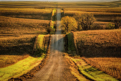 Photograph - Country Road by Scott Bean