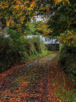 Photograph - Country Road To Cullinan Cottage by James Truett