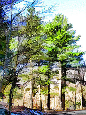 Country Road With Pine Trees 1 Print by Lanjee Chee