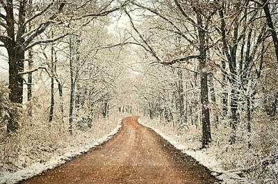 Photograph - Country Roadq by Marty Koch