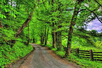 Photograph - Country Roads by Dale R Carlson