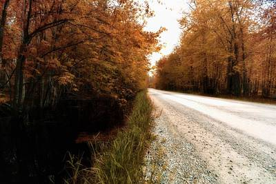 Photograph - Country Roads by Karl Anderson