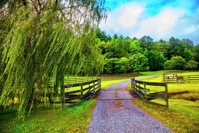 Photograph - Country Roads Take Me Home by Debra and Dave Vanderlaan