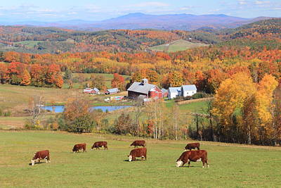 Photograph - Country Scene Barnet Vermont by John Burk
