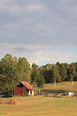 Photograph - Country Scene by Diane Merkle