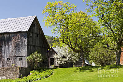 Photograph - Country Spring Scenic by Alan L Graham