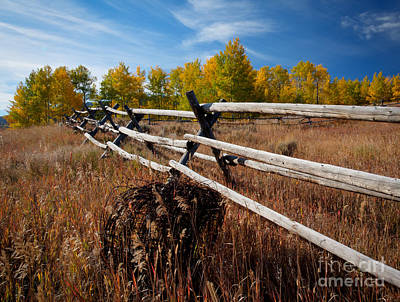 Photograph - Country State Of Mind by Idaho Scenic Images Linda Lantzy