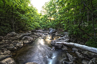 Photograph - Country Stream by Daniel Houghton