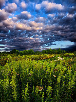 Country Strolling Print by Phil Koch