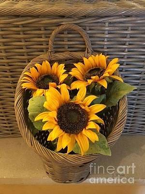 Photograph - Country Sunflowers by Jeannie Rhode